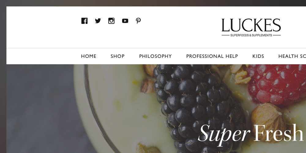 Luckes Website Design