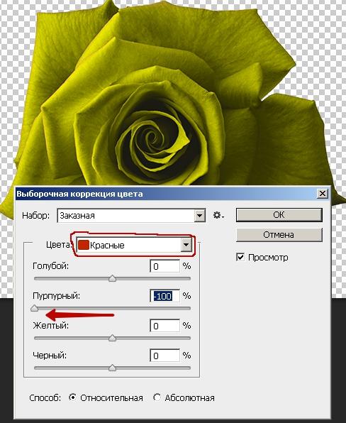 Выборочная_коррекция_цвета_в_фотошопе_Viborochnaya_korrekciya_cveta_v_fotoshope_12