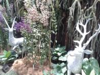 In the garden I met some deer. Местная фауна: встретился с оленями.