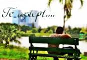 Te aștept