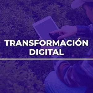 Alfa Capacitación Transformación Digital de Empresas