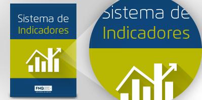 e-book SISTEMA DE INDICADORES