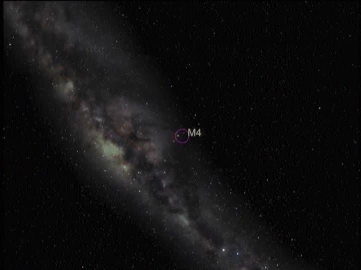 cosmosul 23