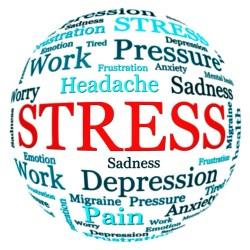La funcion biologica del stress (y un cuestionario para medirlo)
