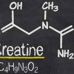 Los Beneficios cognitivos de la Creatina
