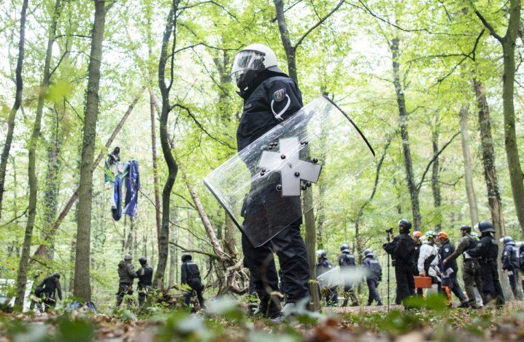 CNN: Viime vuonna murhattiin 227 luontoaktivistia