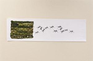 Gurke und Ameisen