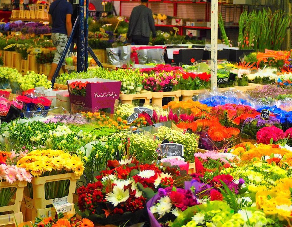 MIN de RUNGIS Marché des fleurs