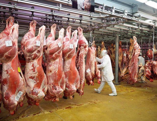 MIN Rungis pavillon de la viande