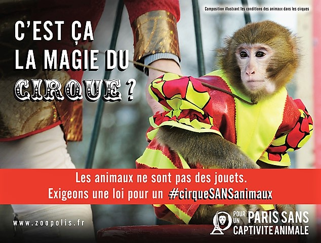 Cirque sans animaux Loi association Zoopolis