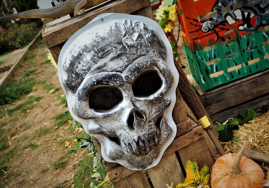 Halloween à Alfortville concours déguisement au jardin Rosa Parks