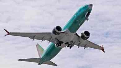 Photo of Polizón cae de avión en pleno vuelo; su cuerpo apareció en un jardín de Londres