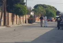 Photo of Riegan restos humanos en Rosarito