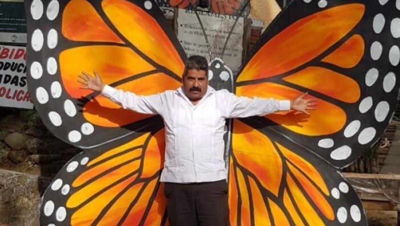 desaparición de defensor de la mariposa monarca