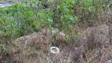 Photo of Encuentran cadáver de una mujer con varios impactos de bala