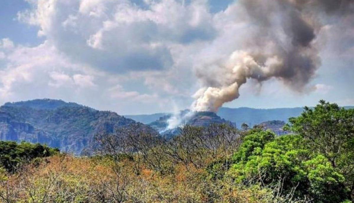 Intenta hacer Tiktok y provoca incendio forestal