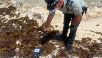 Photo of Hallan droga en la playa