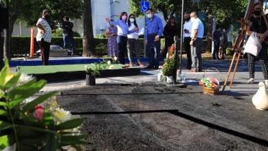 Aparece virgen de guadalupe en Nuevo León