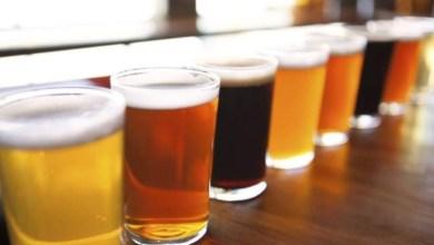 Bacteria-heces-fecales-es-localizada-en-cervezas-artesanales