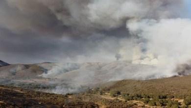 Controlan-mega-incendio-forestal-en-zona-turística