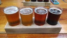 ...and the next go-round. (L to R: Andromeda single-hopped pale ale, Jacques hoppy Belgian tripel, Truth IPA, and Drunkle imperial mild.)