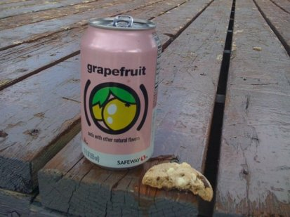 Chocolate-chip cookie and grapefruit soda...didn't Bill Cosby do a sketch about chocolate cake and grapefruit juice for breakfast?