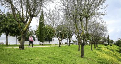 Albufeira prossegue investimento na poupança de água de rega em espaços públicos