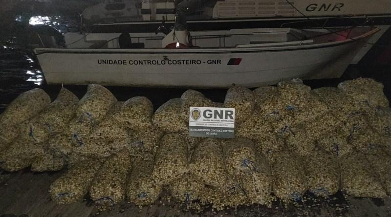 Apreensão de nove toneladas de bivalves em situação irregular na Ria Formosa