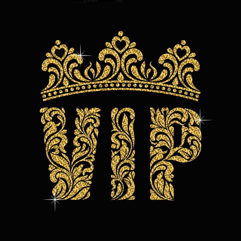 VIP Very Into Partying logo