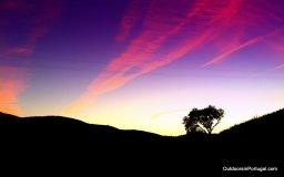 Algarve winter sky.