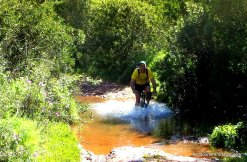 Mountain biking near Alte