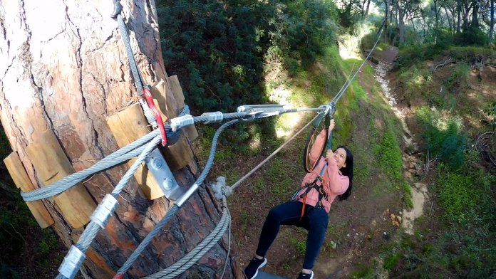 treetop adventure algarve