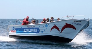 ophelia-catamaran42