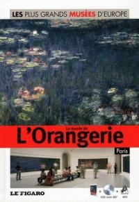 les-plus-grands-musees-d-europe-le-musee-de-l-orangerie-paris-dvd-volume-11