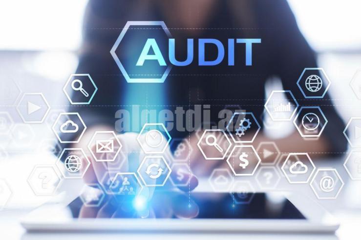 insurance-management-software-audit