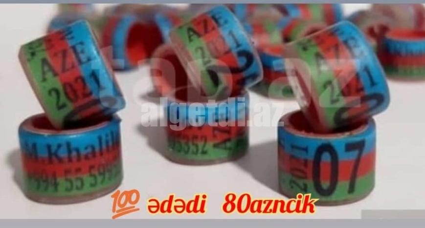 uzuk-5