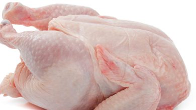 Photo of 23 % انخفاض أسعار الدجاج الطازج والمجمد