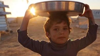 """Photo of """"سلام.. فريكة.. أرواح صغيرة"""": 3 أفلام أردنية تسجل حضورها بـ """"الجونة السينمائي"""""""