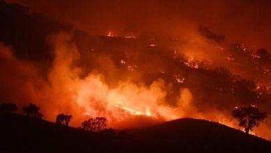Photo of الحرائق تواصل اندلاعها في أستراليا وتقترب من الجبال الثلجية