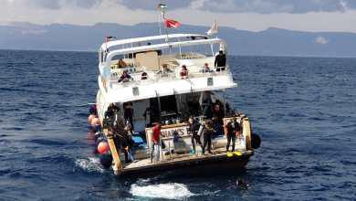 قارب وسط أمواج خليج العقبة - الغد