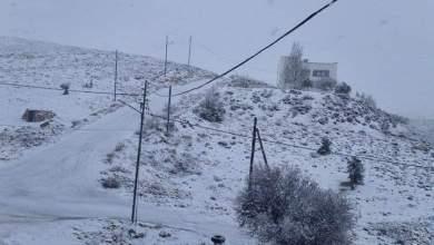 Photo of معان: الثلوج تغلق طرقا في البترا