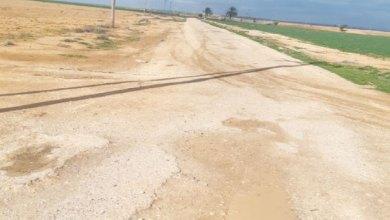 Photo of إلغاء 67 طريقا زراعيا وقرويا بالمفرق.. ضربة قاسية للقطاع الزراعي