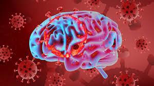 كورونا والدماغ
