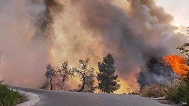 "Photo of إخماد حريق""مفتعل"" في غابات ثغرة عصفور"