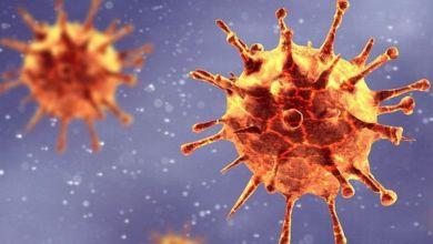 "Photo of فيروس كورونا: إلى أي مدى يجب أن نقلق بشأن ""النسخة الجديدة"""