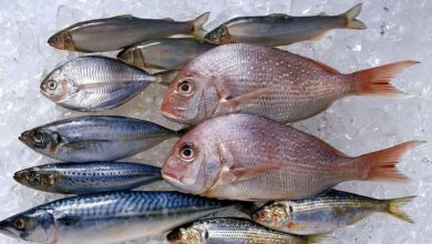 Photo of الأسماك: ما المخاطر الصحية التي قد تسببها وما فوائدها؟