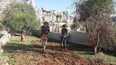 Photo of جبل اللويبدة يبدأ في زراعة القمح (صور)