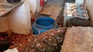 "Photo of معان: مكاره صحية يسببها انتشار ""النتافات"""