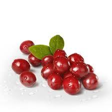 antioksidansi iz brusnice