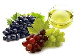 antioksidansi iz grožđa